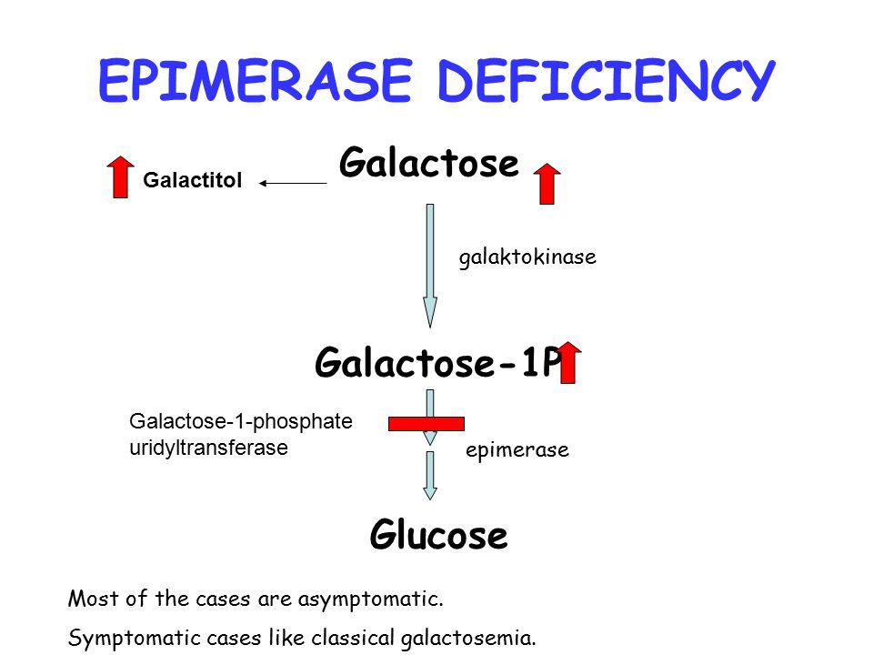 Galactose Galactose-1P Glucose Galactitol galaktokinase Galactose-1-phosphate uridyltransferase epimerase EPIMERASE DEFICIENCY Most of the cases are a