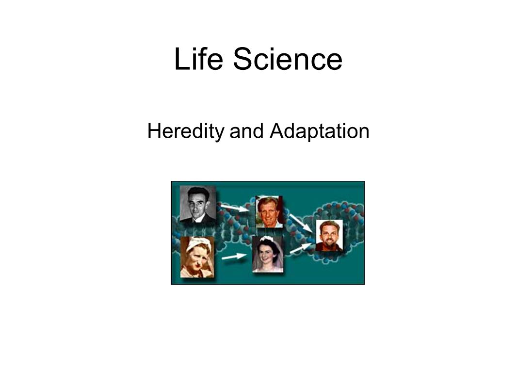 EALR 4: Life Science Big Idea: Biological Evolution (LS3) Core Content: Heredity and Adaptation In prior grades students learned about variations in inherited characteristics.