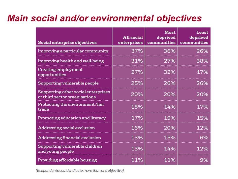 Main social and/or environmental objectives