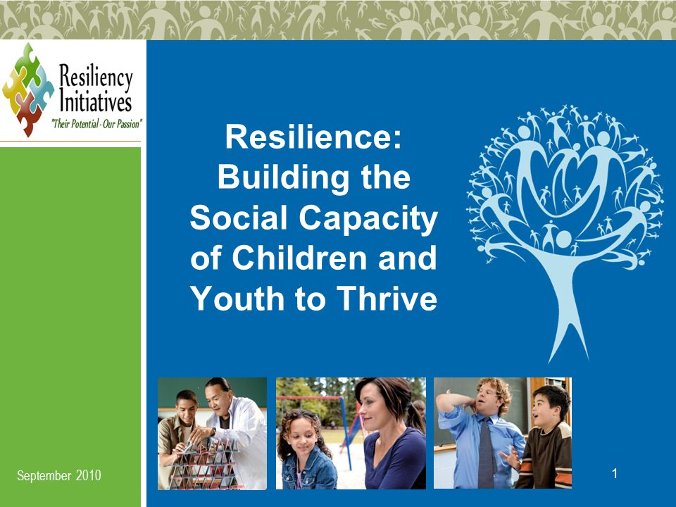 Resiliency Initiatives © 2010 Stacking the Deck Against Risk The idea is to collaboratively work to create an ecology around children and youth that makes it increasingly difficult for certain high risk problems to survive.