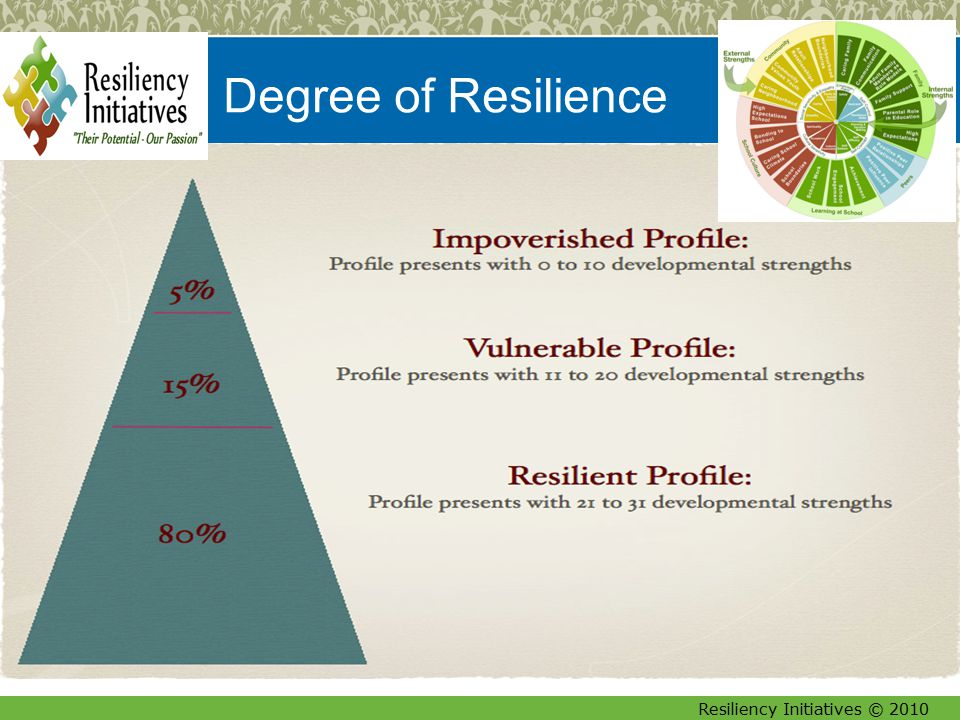 Resiliency Initiatives © 2010 16