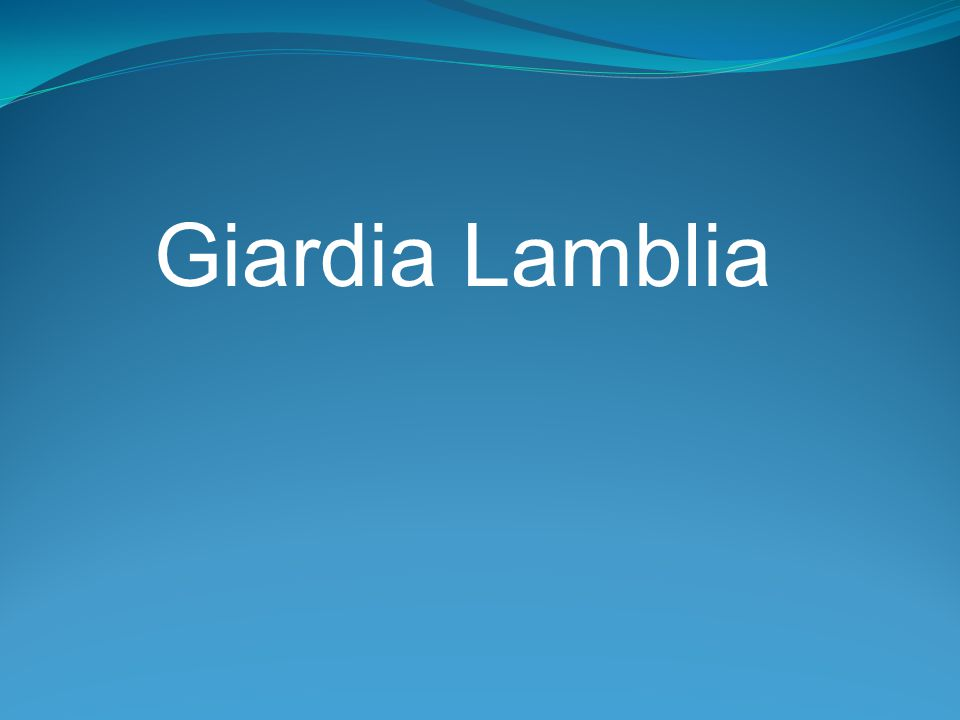 Giardia Giardia lamblia is a flagellated protozoan that infects the duodenum and small intestine.