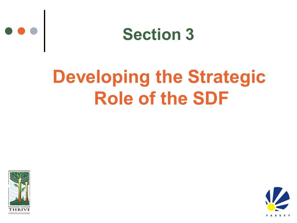 Section 3 Developing the Strategic Role of the SDF