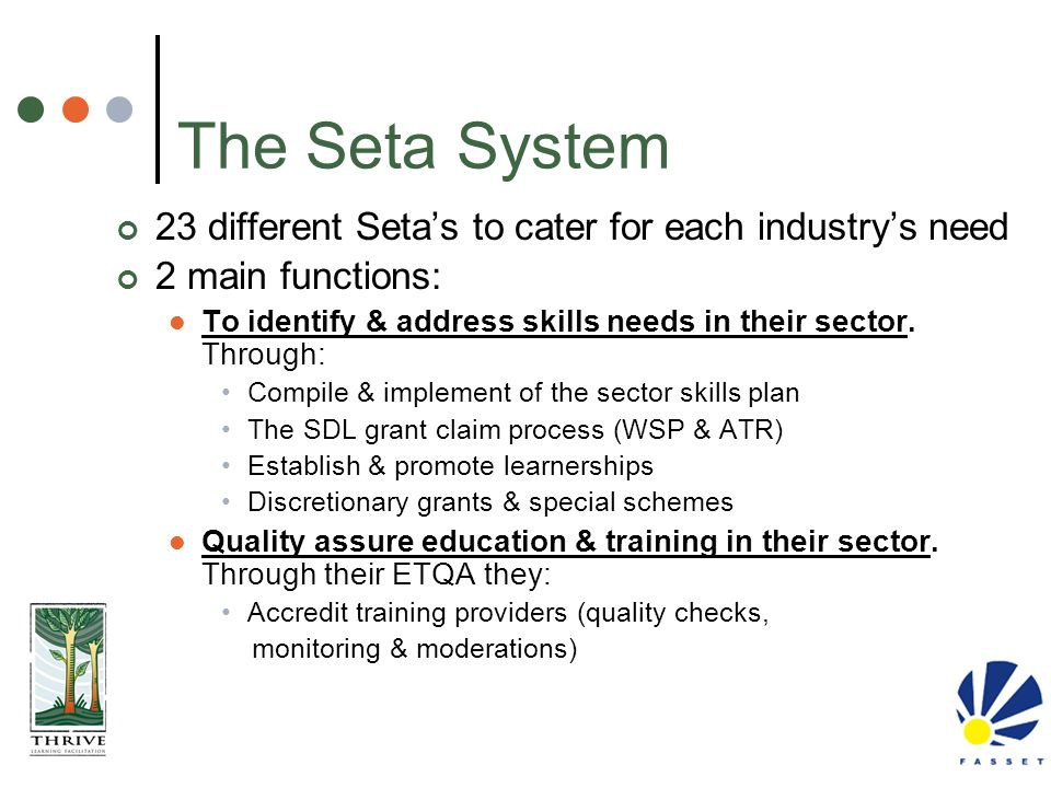 The Seta System 23 different Seta's to cater for each industry's need 2 main functions: To identify & address skills needs in their sector. Through: C