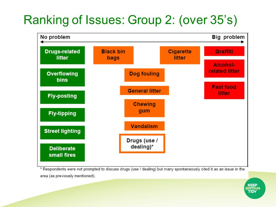 Ranking of Issues: Group 2: (over 35's)