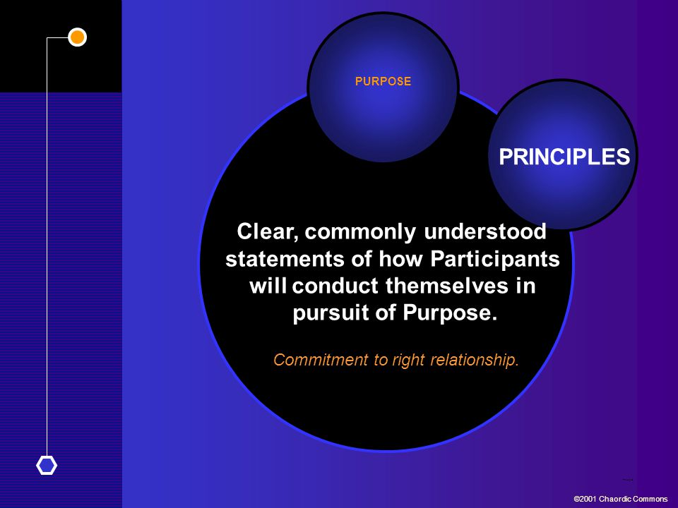 PRINCIPLES Clear, commonly understood statements of how Participants will conduct themselves in pursuit of Purpose.