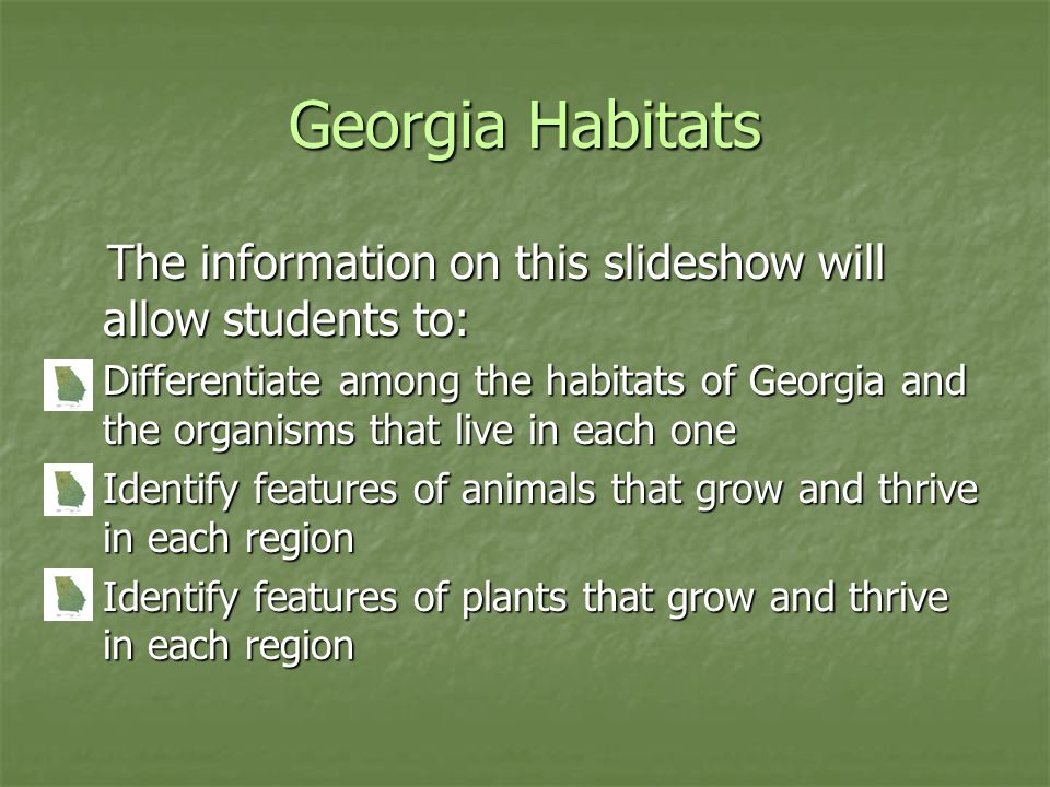 Georgia Habitats The information on this slideshow will allow students to: The information on this slideshow will allow students to: Differentiate amo
