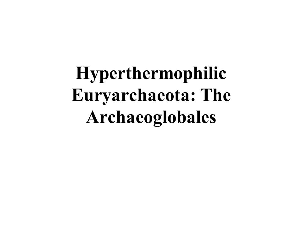 Hyperthermophilic Euryarchaeota: The Archaeoglobales
