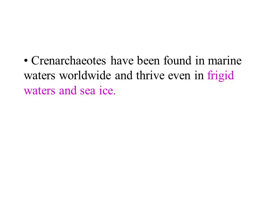 Crenarchaeotes have been found in marine waters worldwide and thrive even in frigid waters and sea ice.