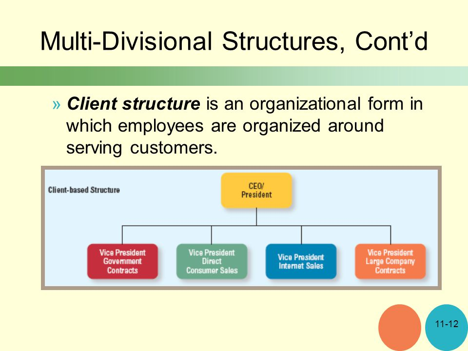 Multi-Divisional Structures, Cont'd »Client structure is an organizational form in which employees are organized around serving customers.