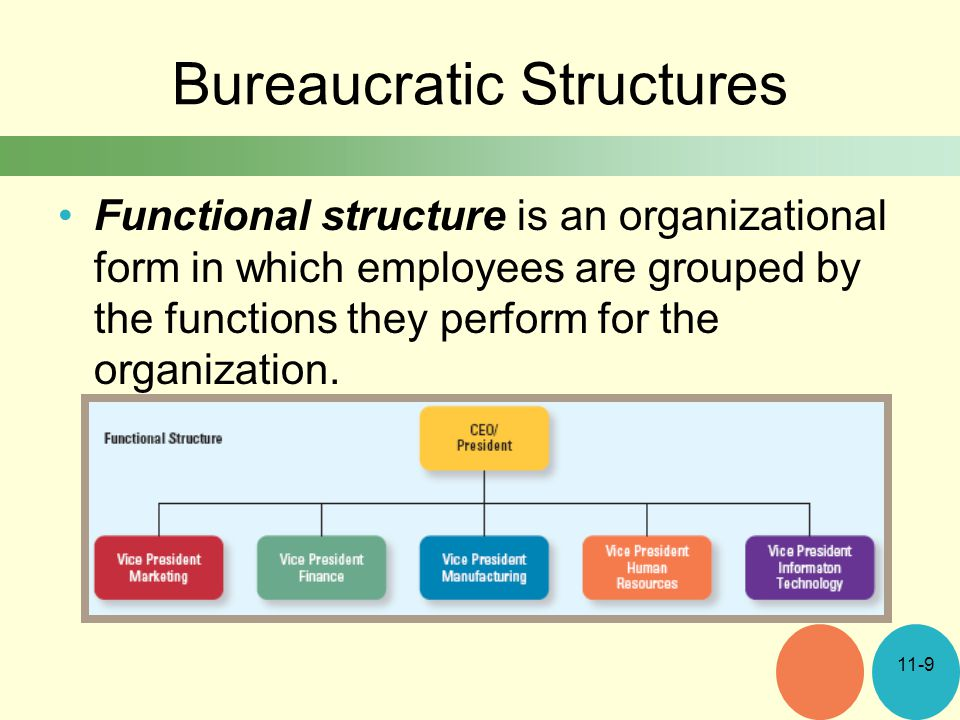 Bureaucratic Structures Functional structure is an organizational form in which employees are grouped by the functions they perform for the organization.