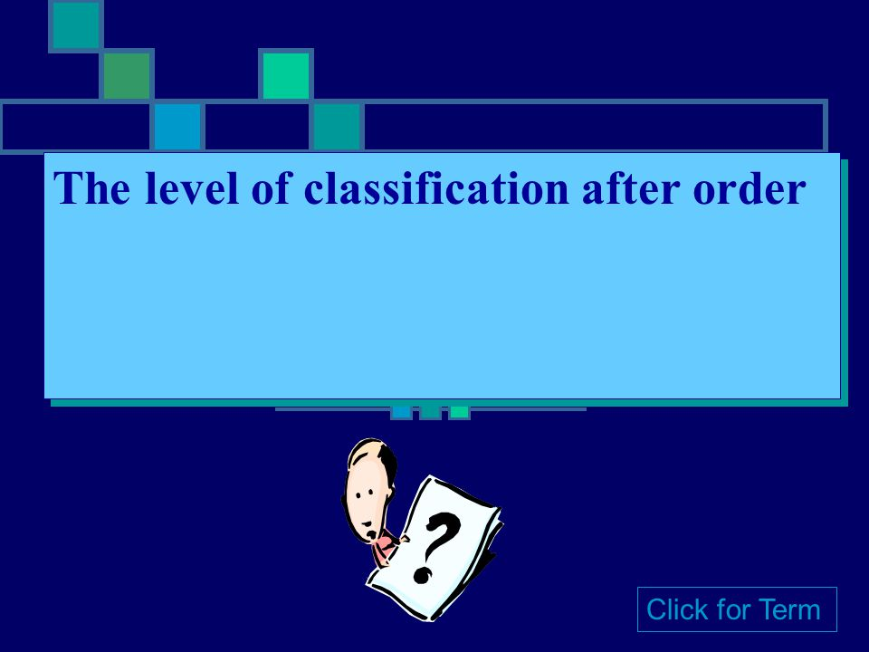 Order The level of classification after class Click for Term