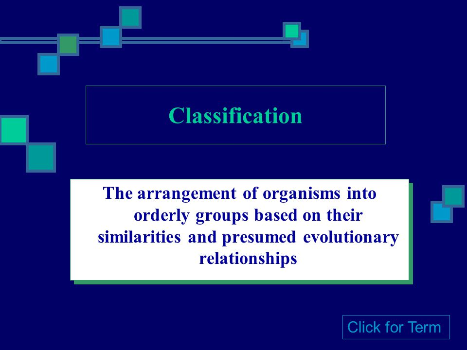Classification The arrangement of organisms into orderly groups based on their similarities and presumed evolutionary relationships Click for Term