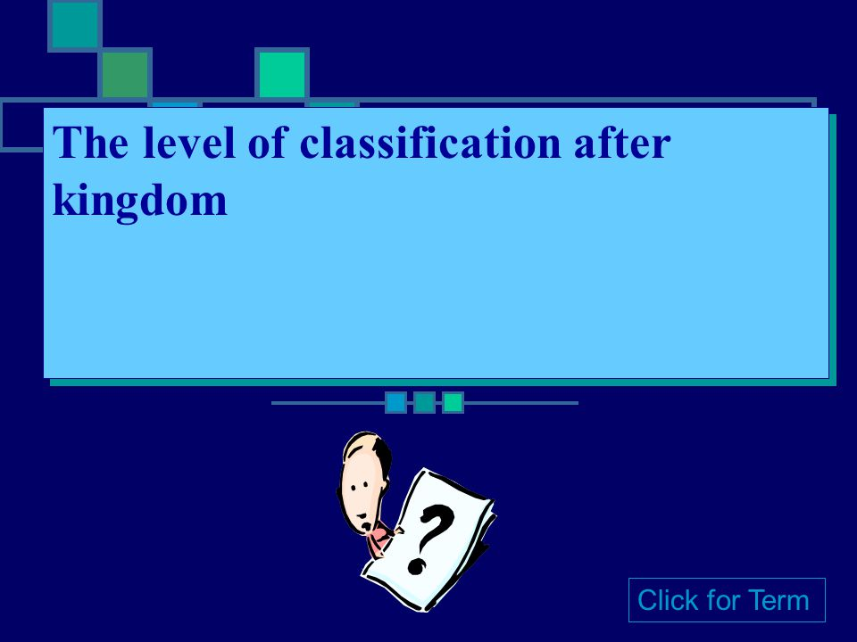 Kingdom The most general of the seven levels of classification Click for Term