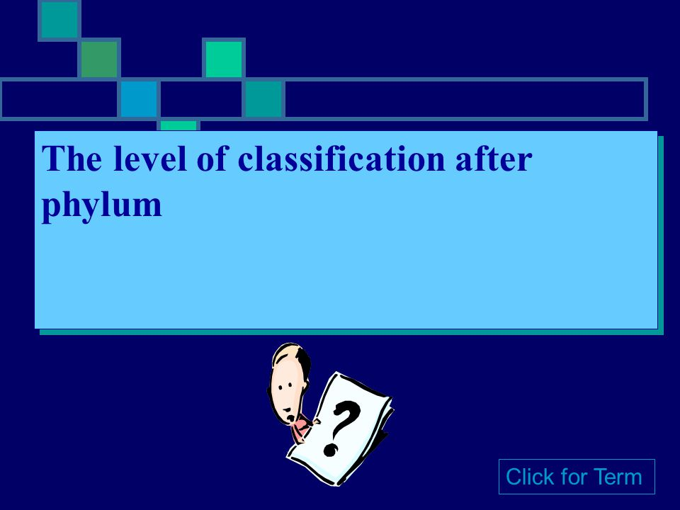 The level of classification after phylum Click for Term