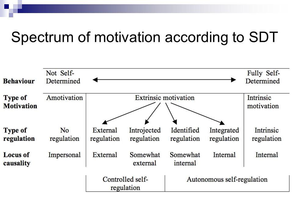 Seven principles 4.Externally regulated behavior can become internally regulated 5.
