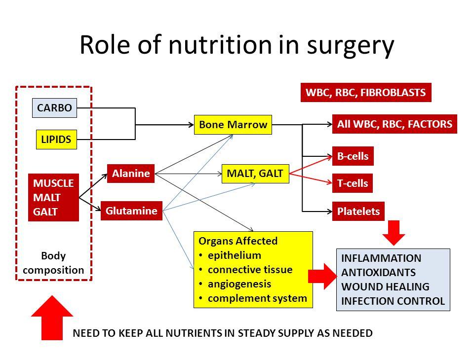 Role of nutrition in surgery LIPIDS MUSCLE MALT GALT CARBO Alanine WBC, RBC, FIBROBLASTS All WBC, RBC, FACTORS Bone Marrow MALT, GALT B-cells T-cells