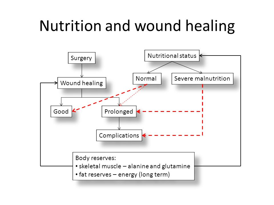 Nutrition and wound healing Wound healing Surgery Nutritional status Severe malnutrition Good Prolonged Complications Normal Body reserves: skeletal m