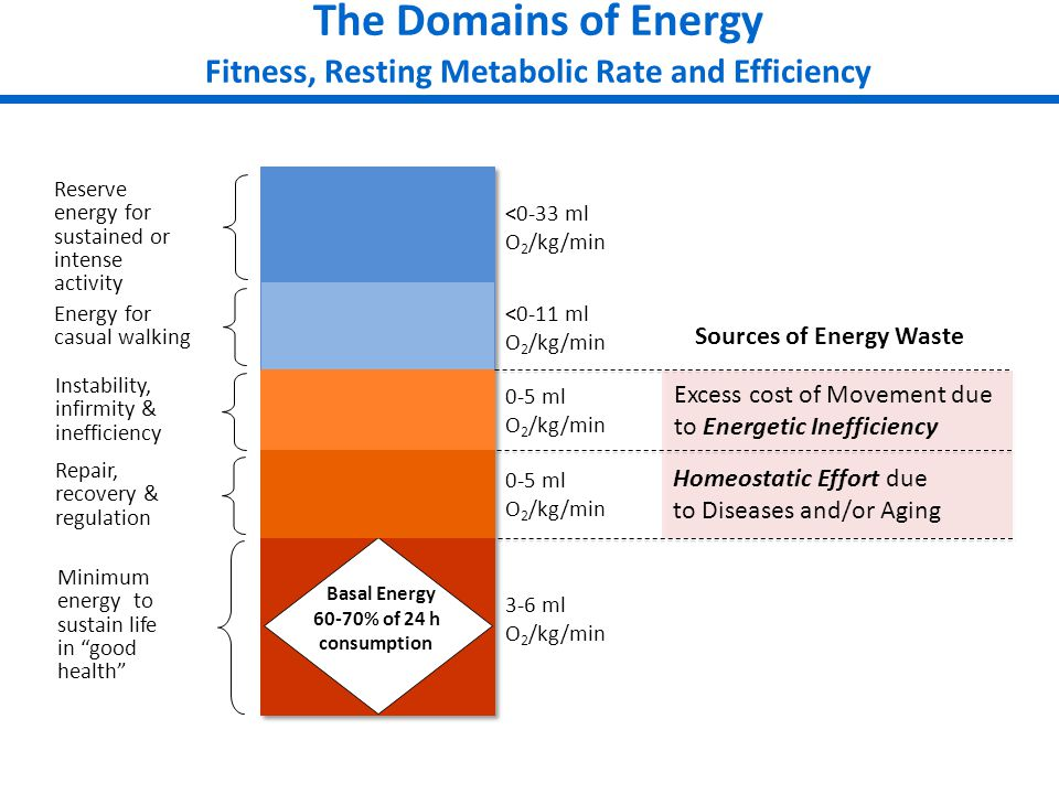 The Domains of Energy Fitness, Resting Metabolic Rate and Efficiency Minimum energy to sustain life in good health Repair, recovery & regulation Energy for casual walking Instability, infirmity & inefficiency 3-6 ml O 2 /kg/min 0-5 ml O 2 /kg/min <0-11 ml O 2 /kg/min Reserve energy for sustained or intense activity <0-33 ml O 2 /kg/min Homeostatic Effort due to Diseases and/or Aging Excess cost of Movement due to Energetic Inefficiency Sources of Energy Waste