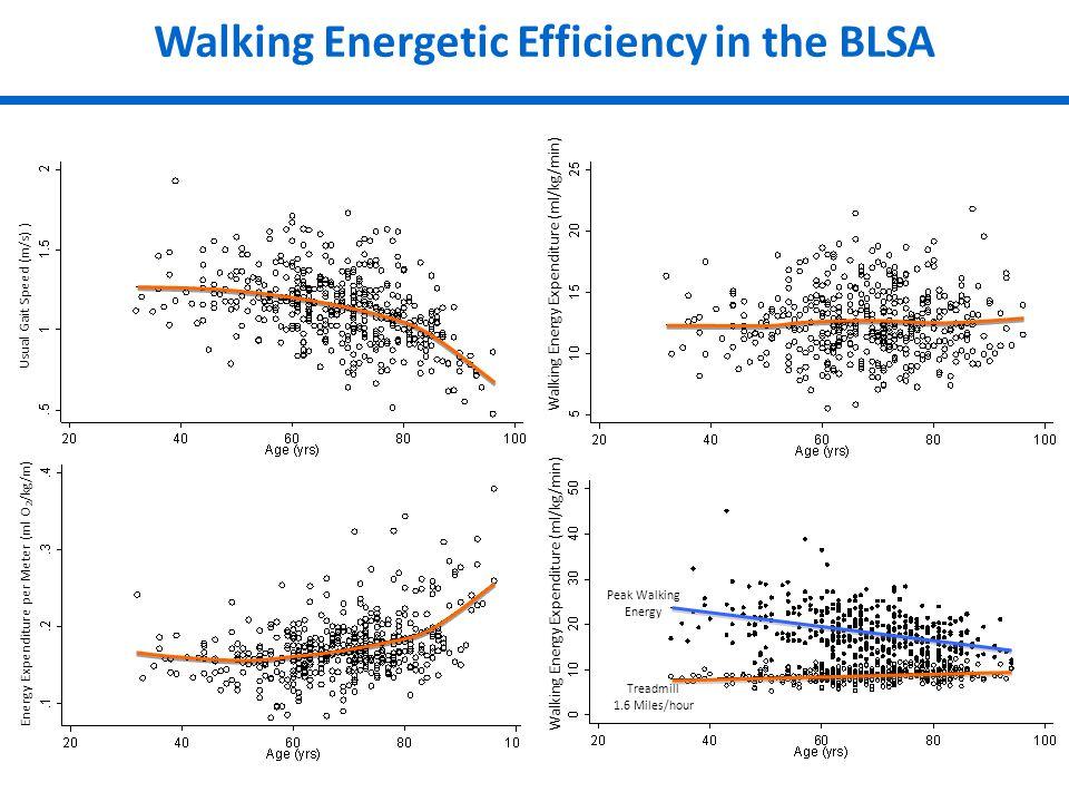 Energy Expenditure per Meter (ml O 2 /kg/m) Usual Gait Speed (m/s) ) Walking Energy Expenditure (ml/kg/min) Treadmill 1.6 Miles/hour Peak Walking Energy Walking Energetic Efficiency in the BLSA