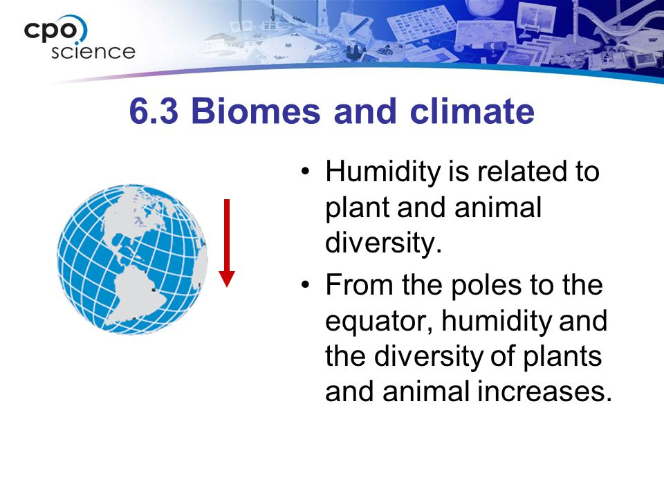 6.3 Biomes and climate At the equator, sunlight is direct and intense.