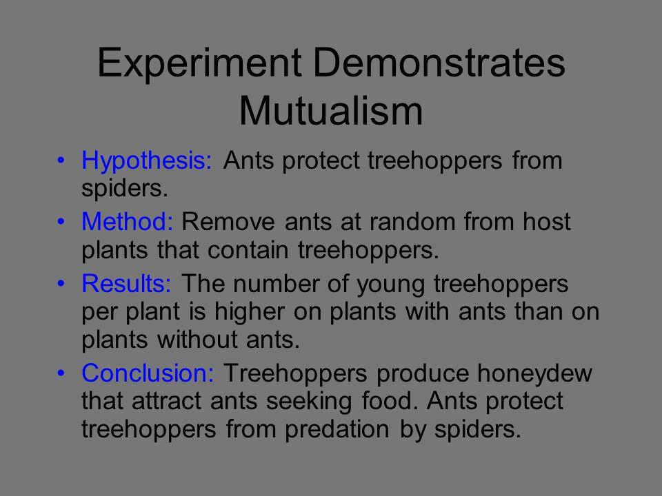 Experiment Demonstrates Mutualism Hypothesis: Ants protect treehoppers from spiders. Method: Remove ants at random from host plants that contain treeh