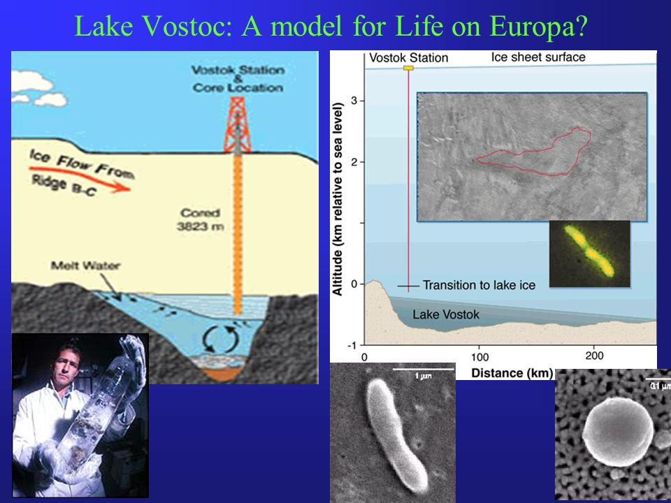 Lake Vostoc: A model for Life on Europa
