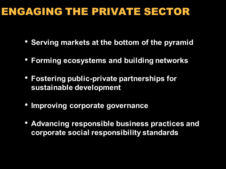 14 ENGAGING THE PRIVATE SECTOR Serving markets at the bottom of the pyramid Forming ecosystems and building networks Fostering public-private partnerships for sustainable development Improving corporate governance Advancing responsible business practices and corporate social responsibility standards