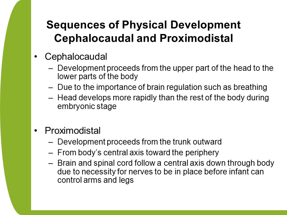 Sequences of Physical Development Cephalocaudal and Proximodistal Cephalocaudal –Development proceeds from the upper part of the head to the lower par