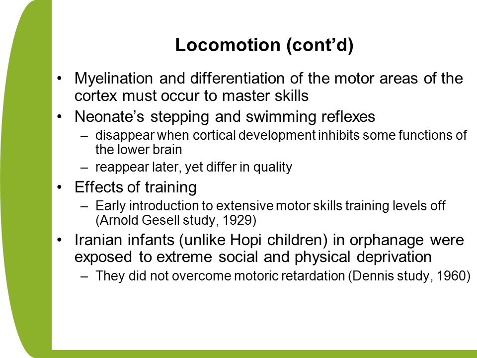 Locomotion (cont'd) Myelination and differentiation of the motor areas of the cortex must occur to master skills Neonate's stepping and swimming reflexes –disappear when cortical development inhibits some functions of the lower brain –reappear later, yet differ in quality Effects of training –Early introduction to extensive motor skills training levels off (Arnold Gesell study, 1929) Iranian infants (unlike Hopi children) in orphanage were exposed to extreme social and physical deprivation –They did not overcome motoric retardation (Dennis study, 1960)