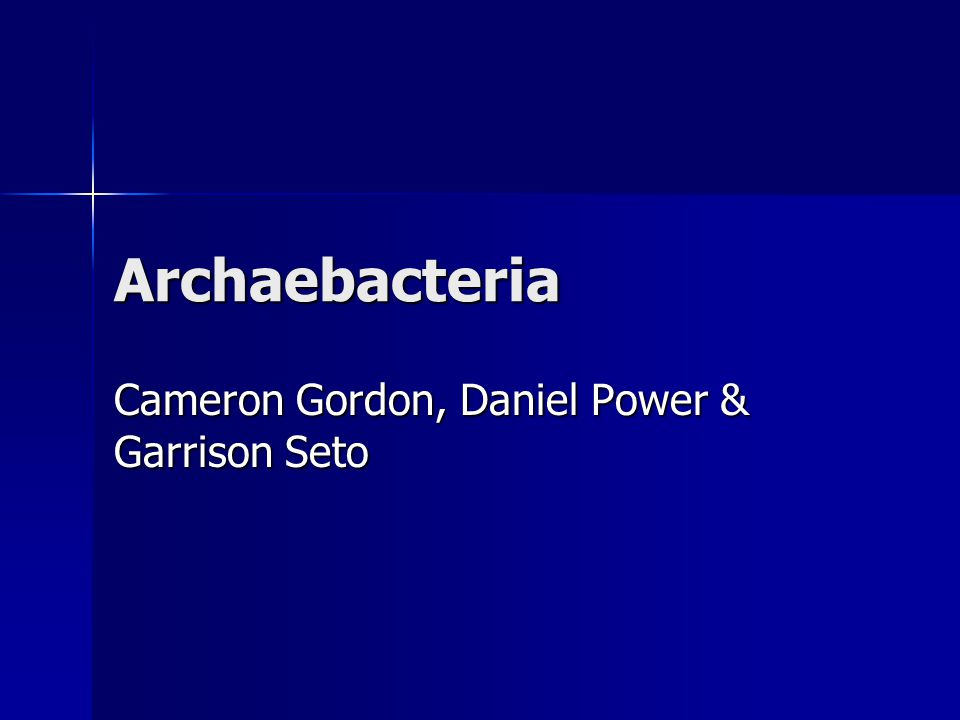 Archaebacteria Cameron Gordon, Daniel Power & Garrison Seto