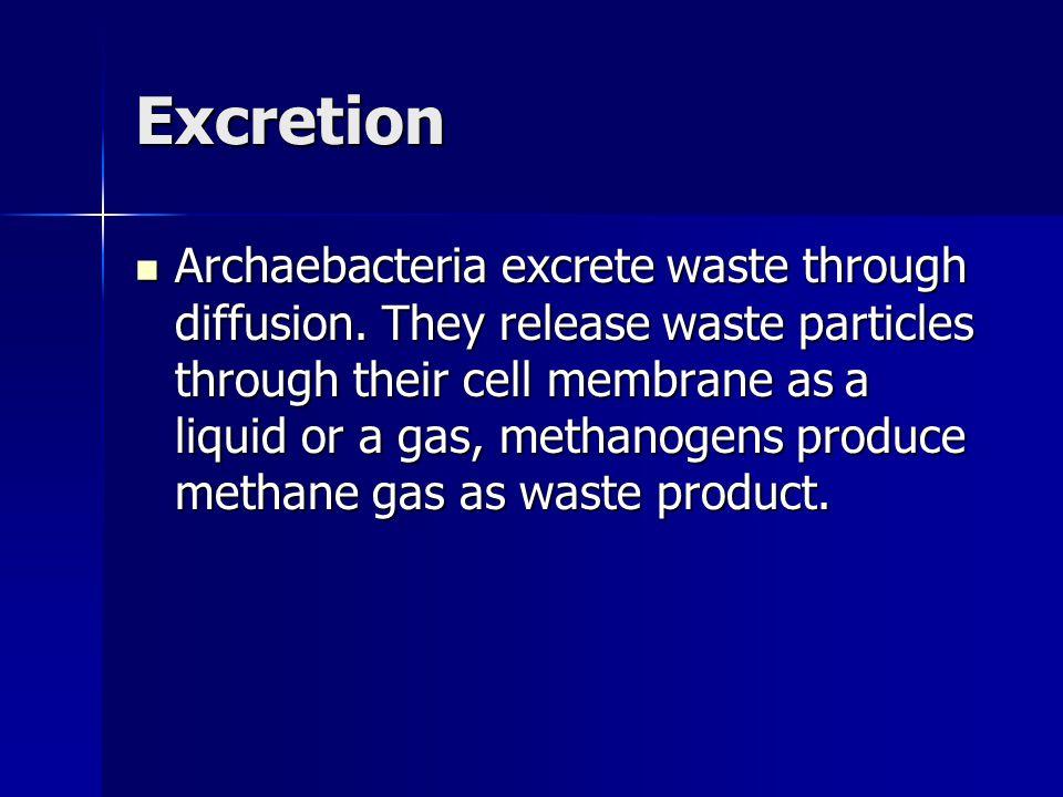 Excretion Archaebacteria excrete waste through diffusion.