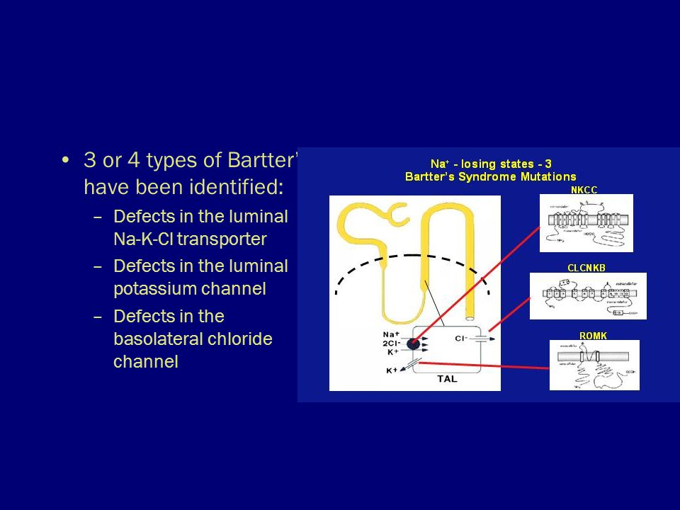 3 or 4 types of Bartter's have been identified: –Defects in the luminal Na-K-Cl transporter –Defects in the luminal potassium channel –Defects in the