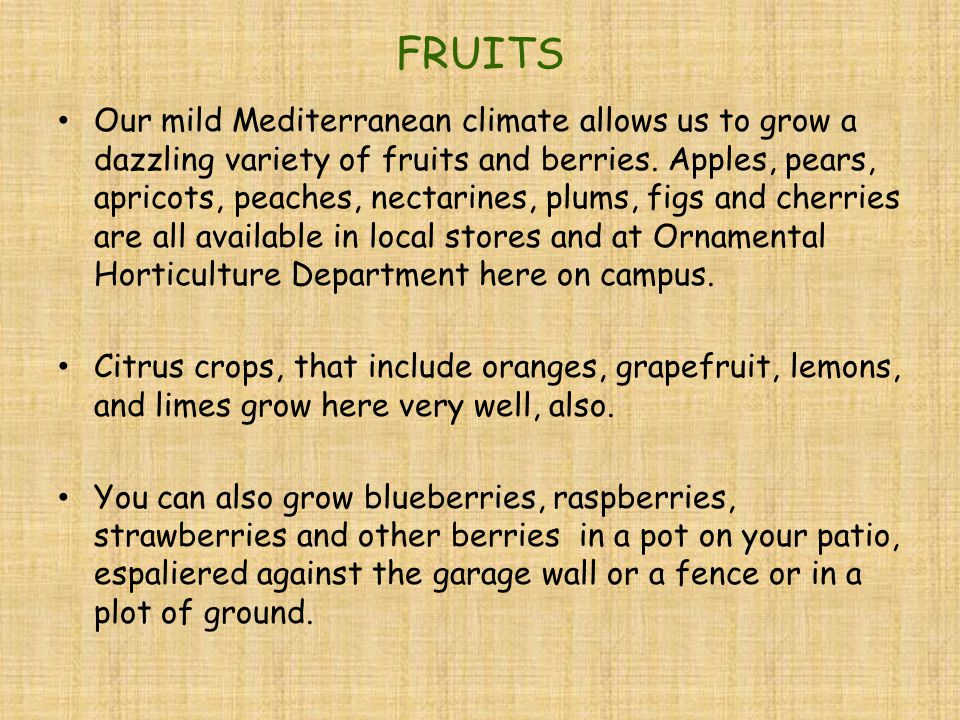 FRUITS Our mild Mediterranean climate allows us to grow a dazzling variety of fruits and berries.