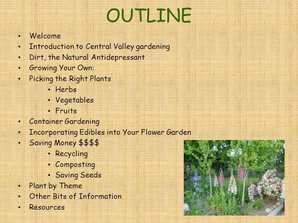 OUTLINE Welcome Introduction to Central Valley gardening Dirt, the Natural Antidepressant Growing Your Own: Picking the Right Plants Herbs Vegetables Fruits Container Gardening Incorporating Edibles into Your Flower Garden Saving Money $$$$ Recycling Composting Saving Seeds Plant by Theme Other Bits of Information Resources