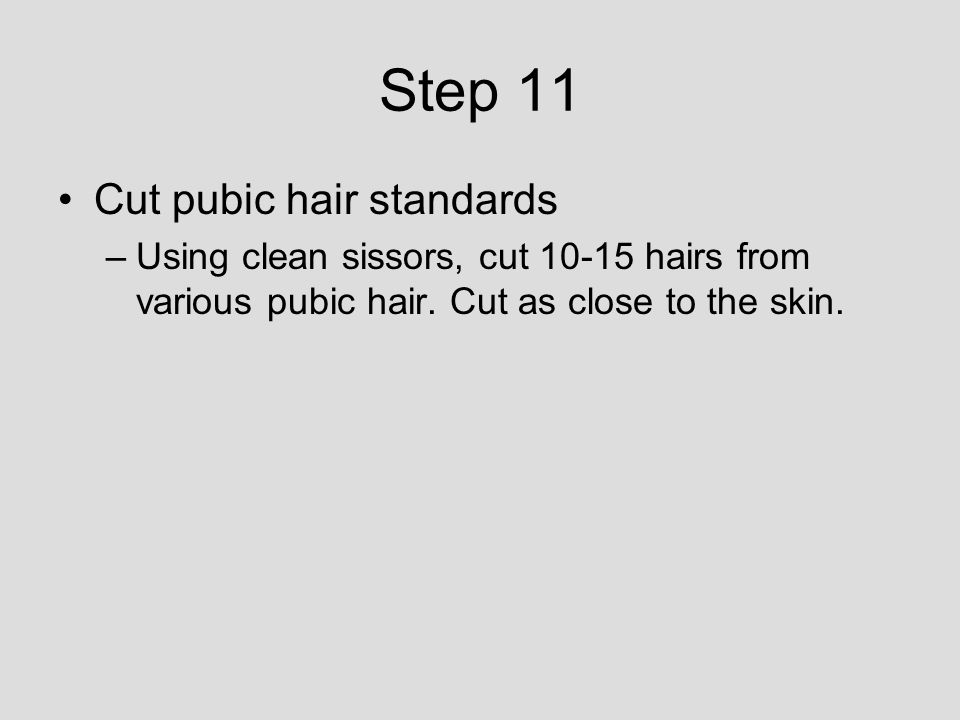 Step 11 Cut pubic hair standards –Using clean sissors, cut 10-15 hairs from various pubic hair.