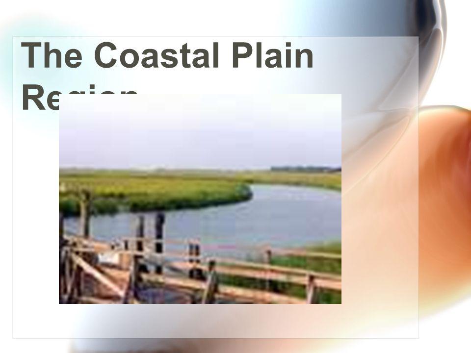 Load up! Let's head farther south into the Coastal Plain Region! It's a big region, so we have lots to explore! Coastal Plain