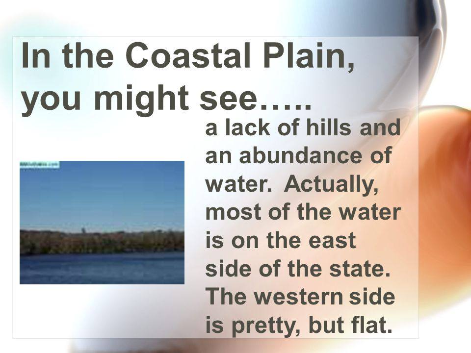 It makes up southern Georgia, so it's the warmest region of the state. The land is flat, and the soil is mostly sandy. This creates a unique environme