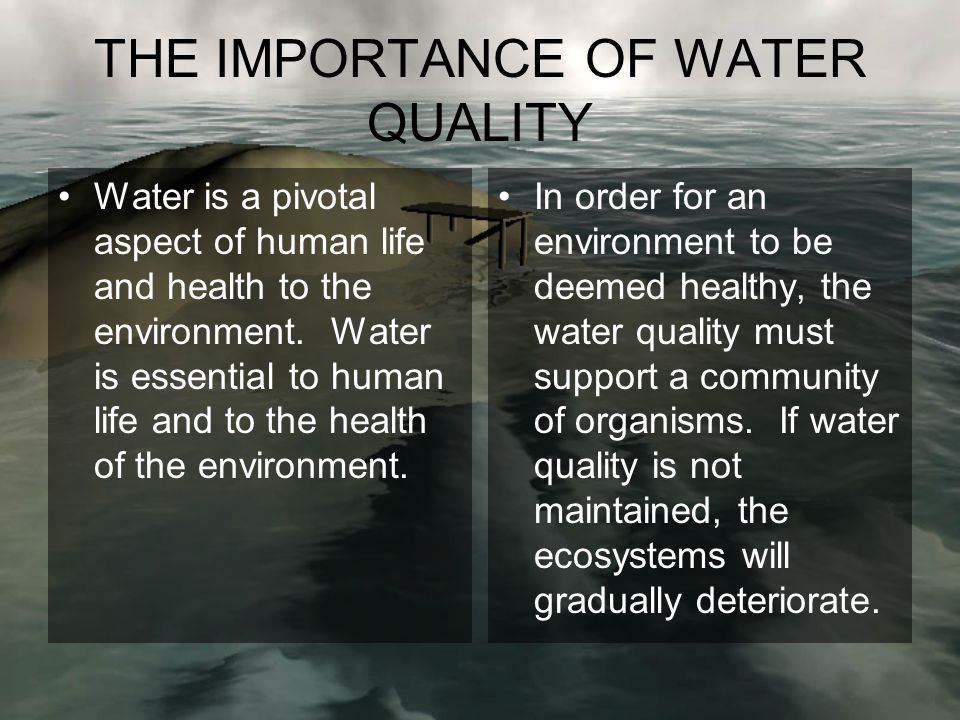THE IMPORTANCE OF WATER QUALITY Water is a pivotal aspect of human life and health to the environment.