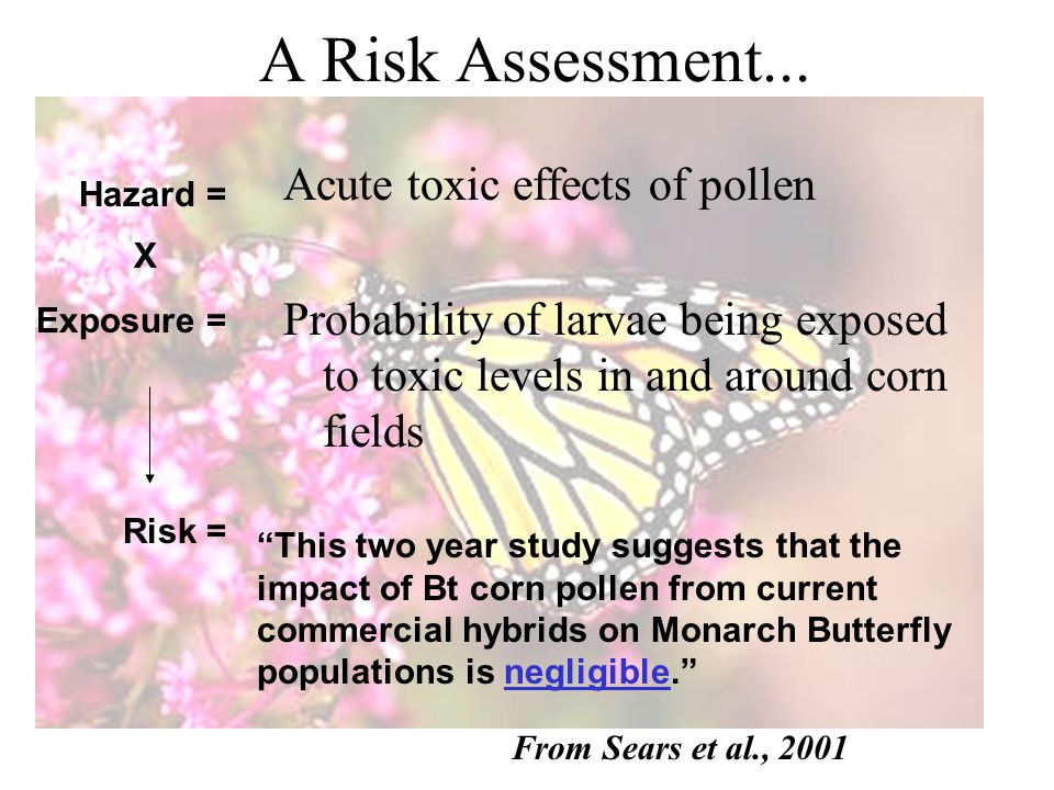 A Risk Assessment...