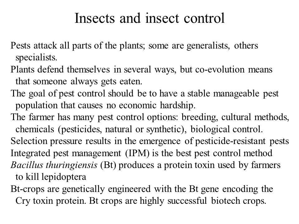 Insects and insect control Pests attack all parts of the plants; some are generalists, others specialists.