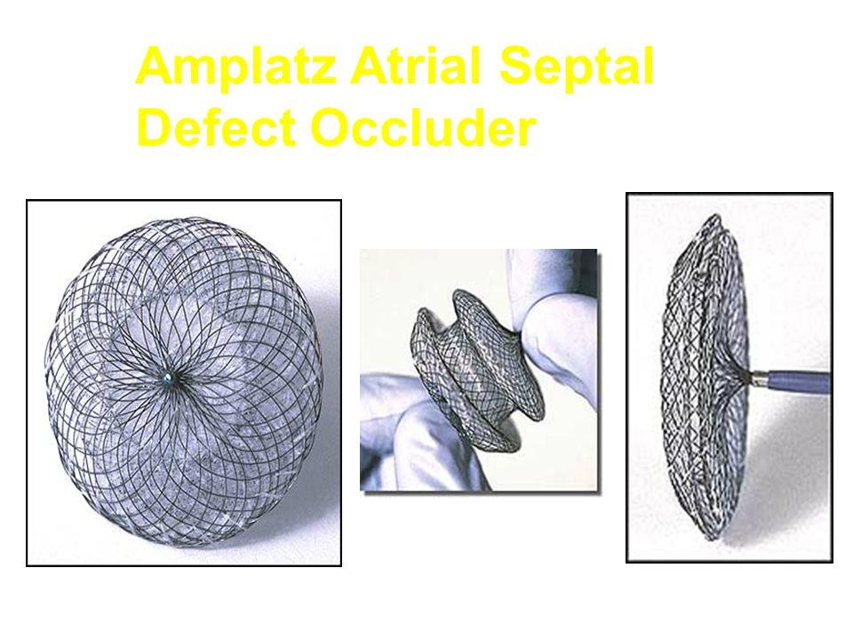 Amplatz Atrial Septal Defect Occluder