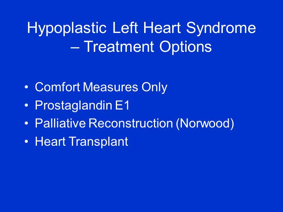 Comfort Measures Only Prostaglandin E1 Palliative Reconstruction (Norwood) Heart Transplant Hypoplastic Left Heart Syndrome – Treatment Options