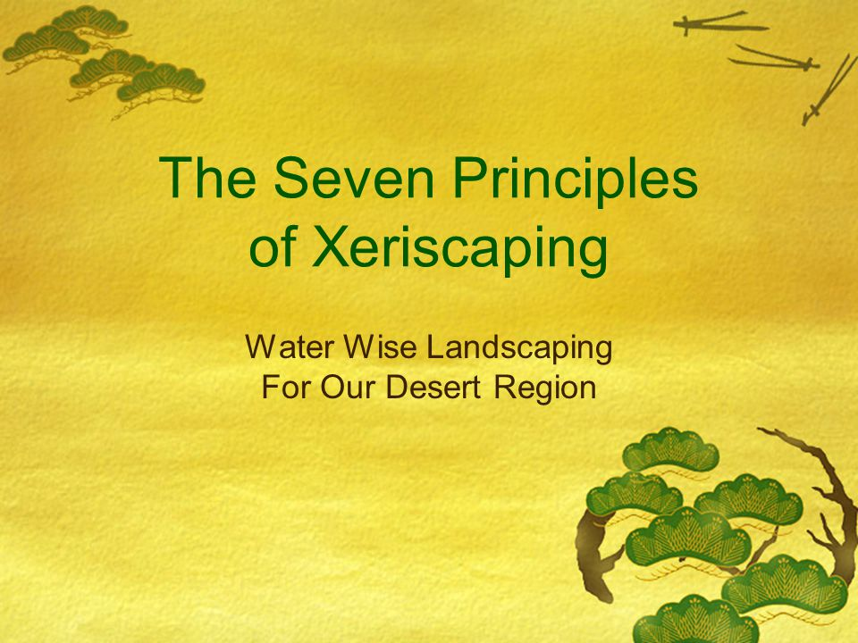 The Seven Principles of Xeriscaping Water Wise Landscaping For Our Desert Region