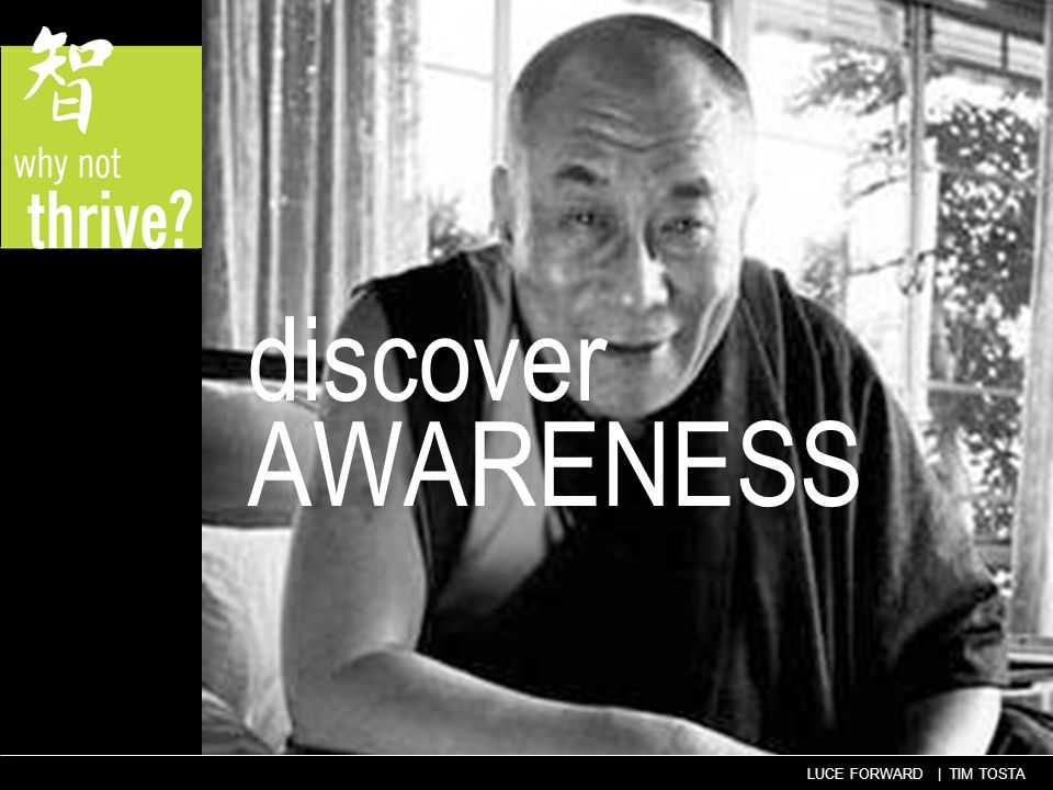 LUCE FORWARD | TIM TOSTA discover AWARENESS