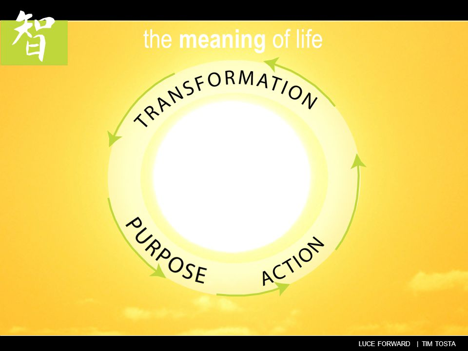 LUCE FORWARD | TIM TOSTA the meaning of life