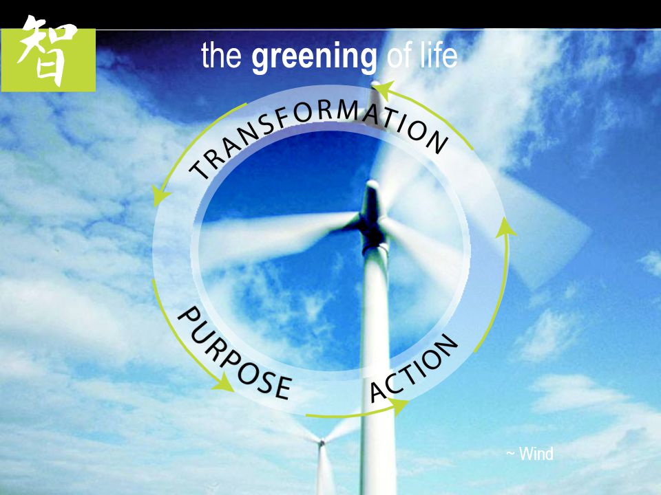 LUCE FORWARD | TIM TOSTA the greening of life ~ Wind