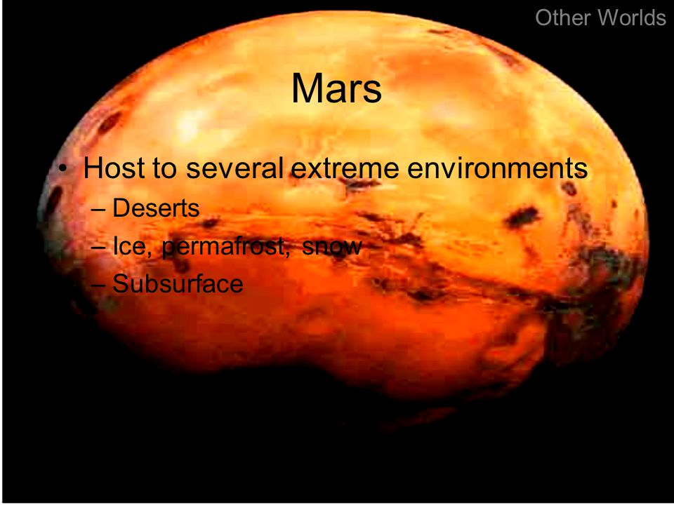 Mars Host to several extreme environments –Deserts –Ice, permafrost, snow –Subsurface Other Worlds