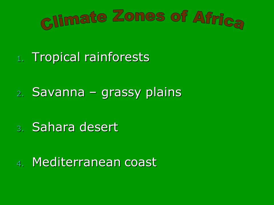 1. Tropical rainforests 2. Savanna – grassy plains 3. Sahara desert 4. Mediterranean coast