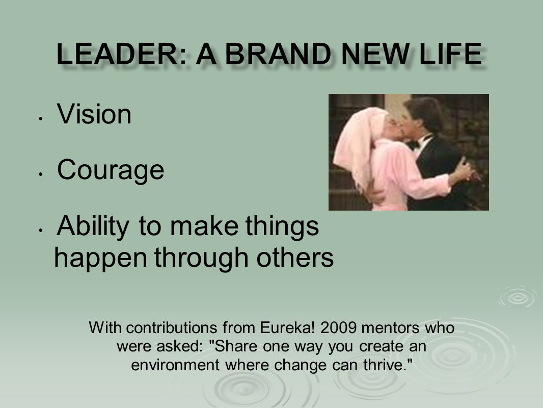 Vision Courage Ability to make things happen through others With contributions from Eureka! 2009 mentors who were asked: